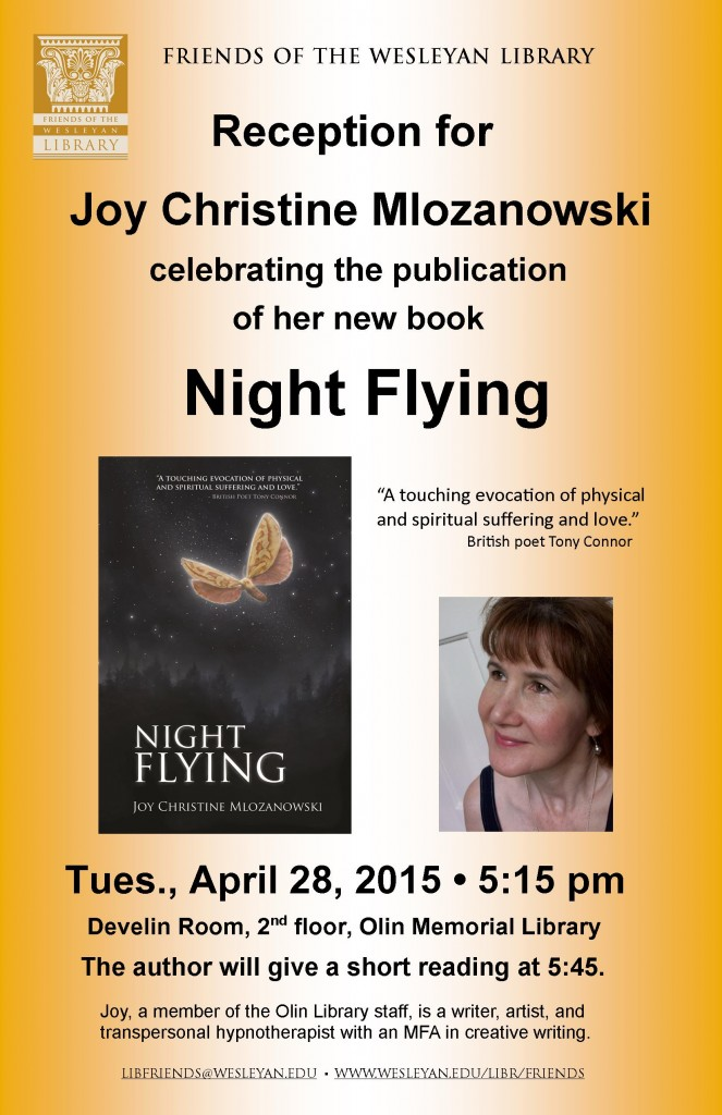 Night Flying poster